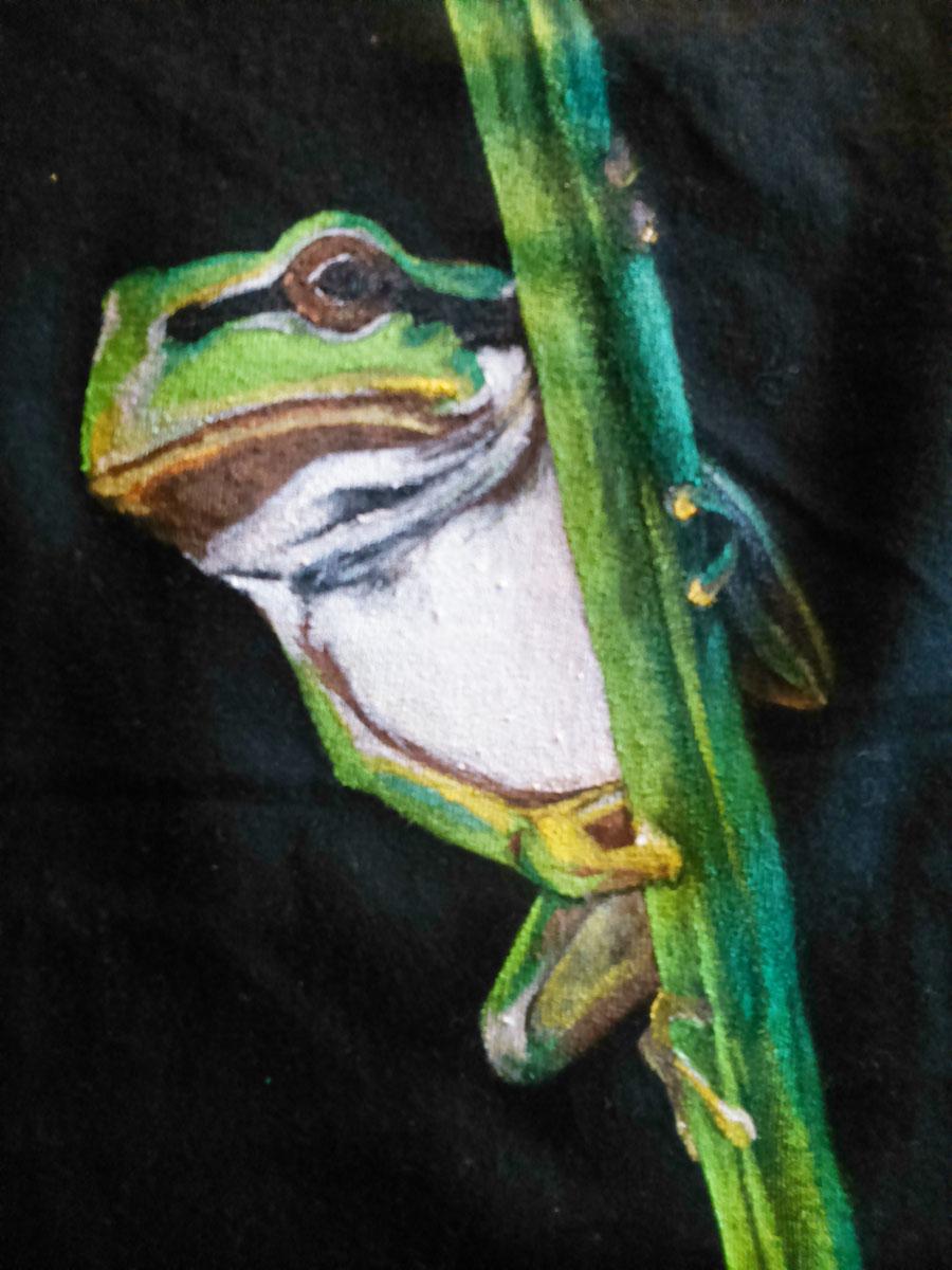 ranita_sirem_3_camiseta pintada a mano