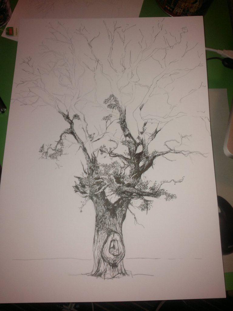 roble de la ermita_olmeda cobeta_ilustracion boli