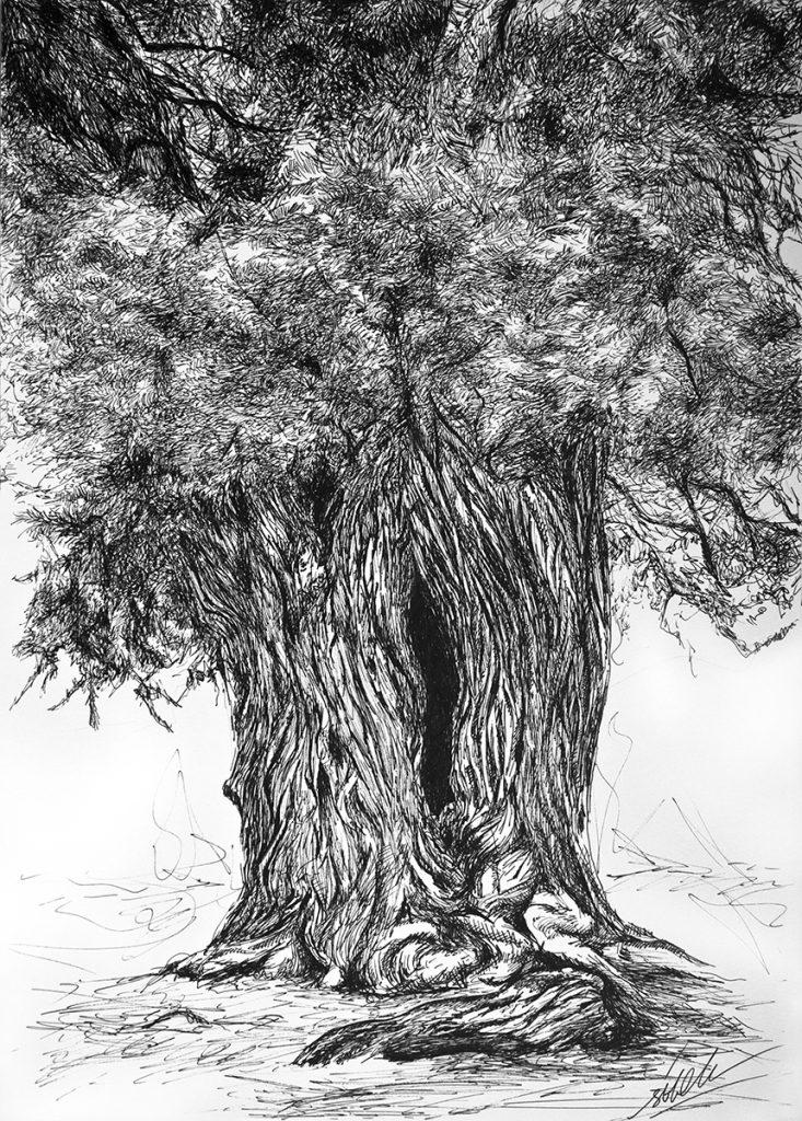 Sabina Arbol_Ilustracion original hecha a mano_Boligrafo sobre papel